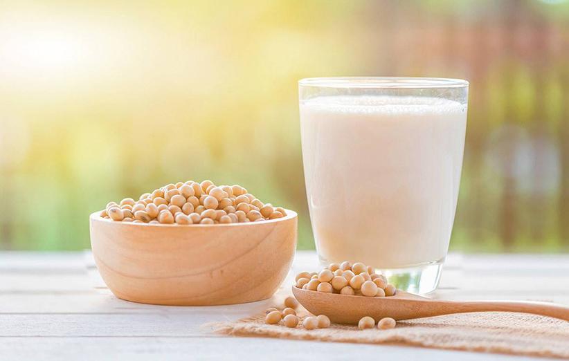 شیر سویا و چاقی
